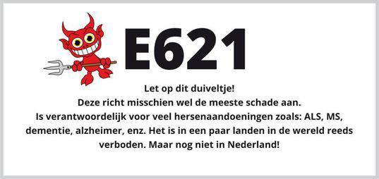 Wat doet E-621 met je lichaam.